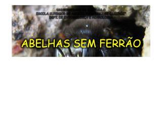 aulaabelhasemferro-100428160050-phpapp01.pdf